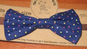 posh dog bow tie 01