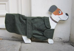 Posh Dog Coat Lightweight waterproof